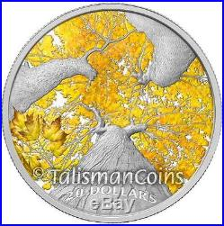 Canada 2013 2014 Maple Canopy Complete 4 Coin $20 Silver Maple Leaf Proof Set